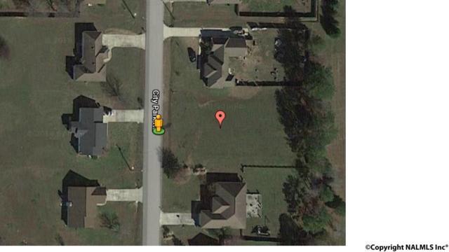 153 City Park Road, New Hope, AL 35760 (MLS #1087387) :: RE/MAX Alliance