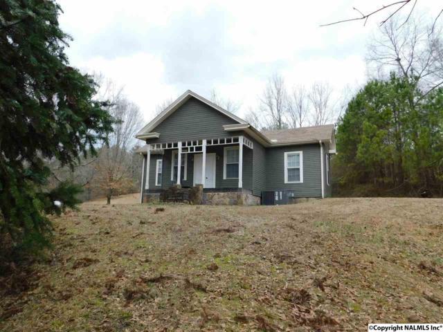 1180 County Road 165, Cedar Bluff, AL 35959 (MLS #1087398) :: Amanda Howard Real Estate™