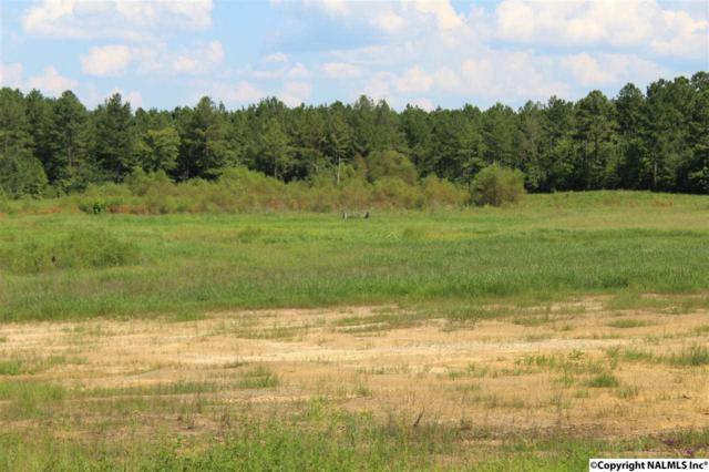 County Road 59, Centre, AL 35960 (MLS #1087401) :: Amanda Howard Real Estate™
