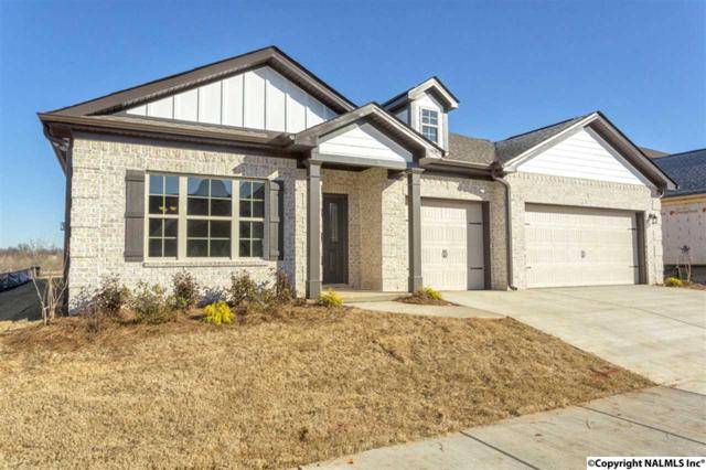 516 Balsam Terrace Way, Huntsville, AL 35824 (MLS #1087414) :: Amanda Howard Real Estate™