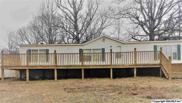 180 County Road 371, Trinity, AL 35673 (MLS #1087418) :: Amanda Howard Real Estate™