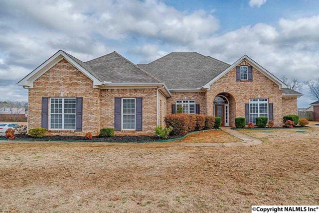 104 Silver Dollar Lane, Madison, AL 35757 (MLS #1087429) :: Amanda Howard Real Estate™