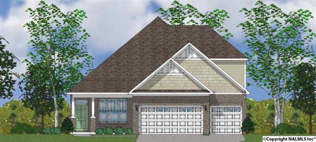 3027 Grand Lake Way, Huntsville, AL 35803 (MLS #1087518) :: Capstone Realty