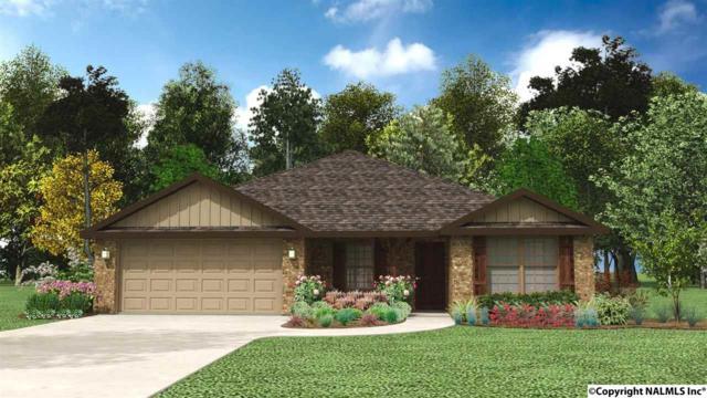 101 Walkers Hill Road, Meridianville, AL 35759 (MLS #1087531) :: Amanda Howard Real Estate™