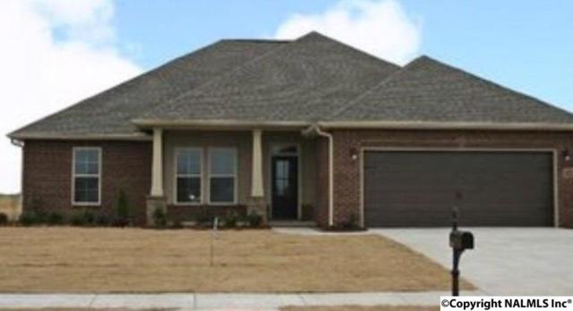 133 Carleighfalls Drive, Meridianville, AL 35759 (MLS #1087620) :: Amanda Howard Real Estate™