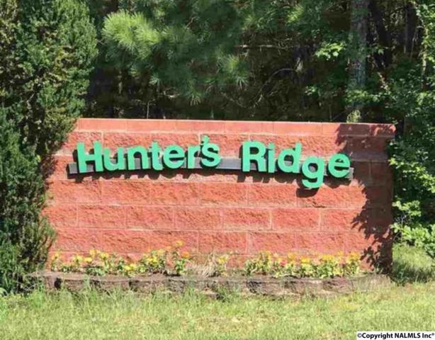 Lot 10 Road 903, Mentone, AL 35984 (MLS #1087666) :: Amanda Howard Real Estate™