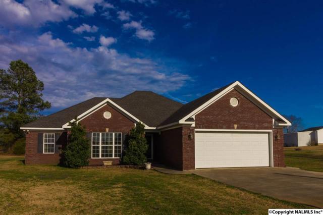 116 County Road 497, Trinity, AL 35673 (MLS #1087693) :: Amanda Howard Real Estate™