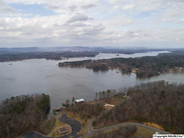 00 Lookout Mountain Drive, Scottsboro, AL 35769 (MLS #1087720) :: Intero Real Estate Services Huntsville