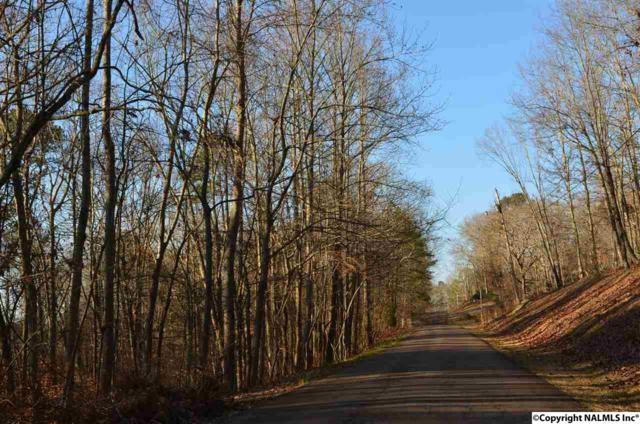 0 Allegheny Drive, Rainbow City, AL 35906 (MLS #1088089) :: Legend Realty