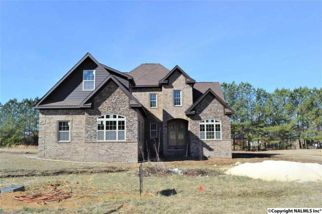2703 Stone Hills Drive, Hartselle, AL 35640 (MLS #1088217) :: Amanda Howard Real Estate™