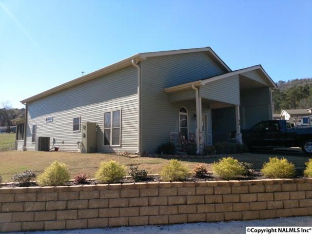 1727 (9a) Convict Camp Road, Guntersville, AL 35976 (MLS #1088327) :: Amanda Howard Real Estate™