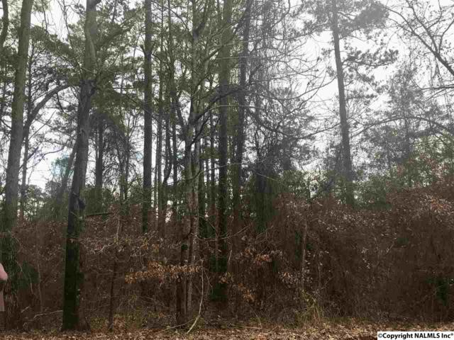 0 Holiday Shores Drive, Scottsboro, AL 35769 (MLS #1088381) :: Amanda Howard Real Estate™