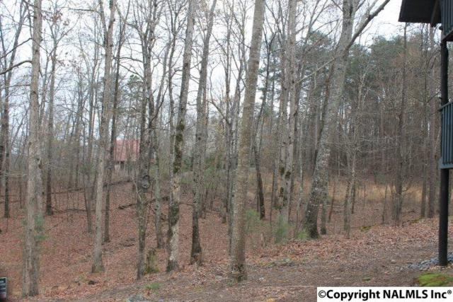 Lot 27 Road 911, Fort Payne, AL 35967 (MLS #1088457) :: Intero Real Estate Services Huntsville