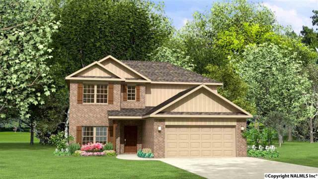 105 Kendall Dee Court, Meridianville, AL 35759 (MLS #1088526) :: Amanda Howard Real Estate™
