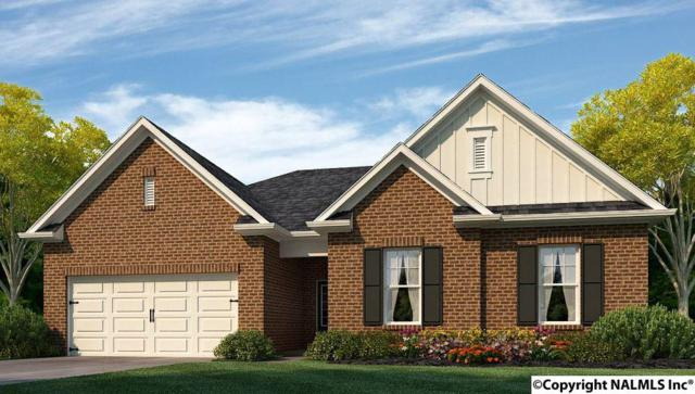 107 Otter Lagoon Drive, Madison, AL 35756 (MLS #1088633) :: Amanda Howard Real Estate™