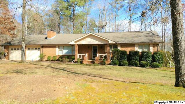 321 Waddill Drive, Rainbow City, AL 35906 (MLS #1088664) :: Amanda Howard Real Estate™