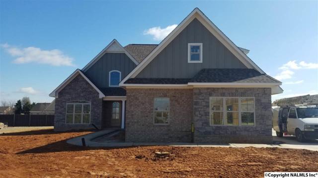24164 Beacon Circle, Athens, AL 35613 (MLS #1088682) :: Amanda Howard Real Estate™