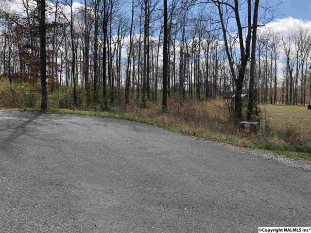 Autumn Creek Dr, Rainsville, AL 35986 (MLS #1088698) :: Amanda Howard Real Estate™