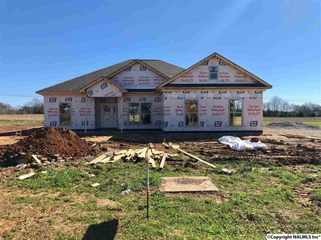 119 Azuba Court, Hazel Green, AL 35750 (MLS #1088709) :: RE/MAX Distinctive | Lowrey Team