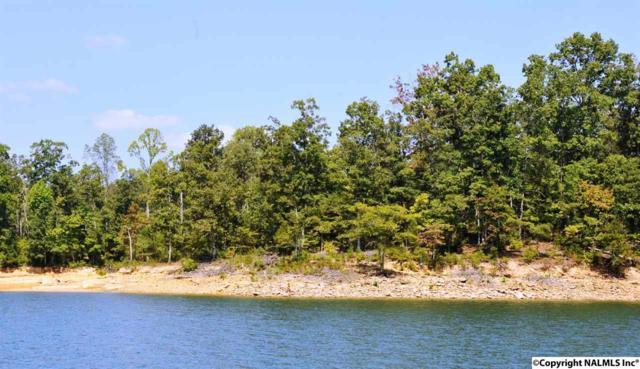 Edgewater Bend, Double Springs, AL 35553 (MLS #1088771) :: Amanda Howard Real Estate™