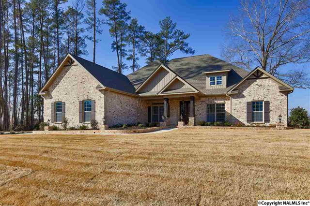 5 Natures Ridge Way, Huntsville, AL 35803 (MLS #1089089) :: Capstone Realty