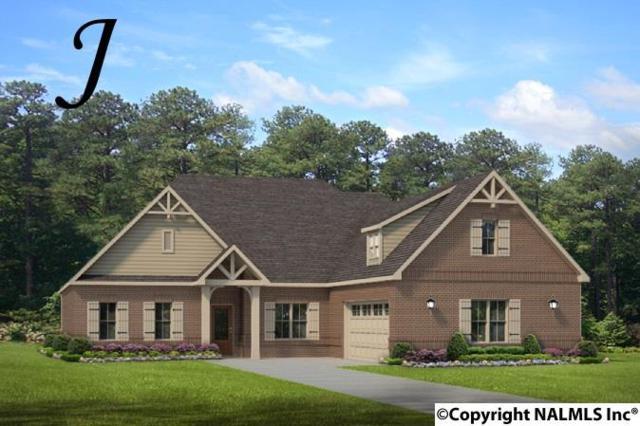 109 Hilltop Ridge Drive, Madison, AL 35756 (MLS #1089097) :: Amanda Howard Real Estate™