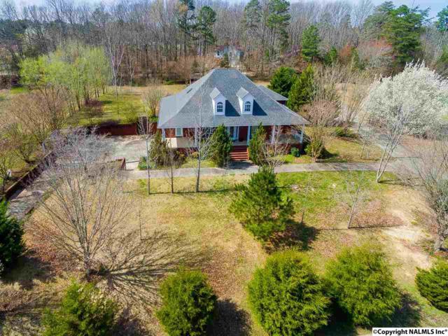 26 Nappier Lane, Laceys Spring, AL 35754 (MLS #1089107) :: Amanda Howard Real Estate™