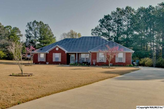 213 Salvia Court, Harvest, AL 35749 (MLS #1089195) :: Amanda Howard Real Estate™