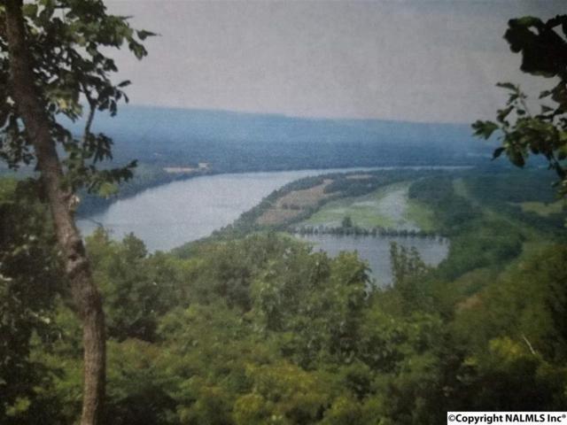 003 County Road 765, Pisgah, AL 35765 (MLS #1089221) :: Amanda Howard Sotheby's International Realty