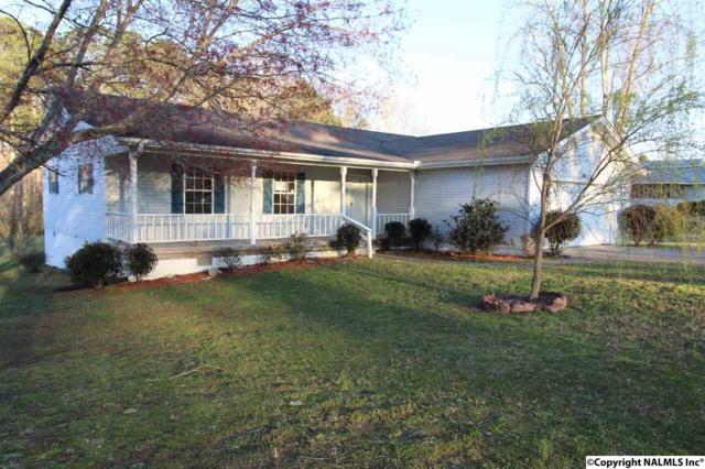 1067 Grace Road, Arab, AL 35016 (MLS #1089261) :: Amanda Howard Real Estate™