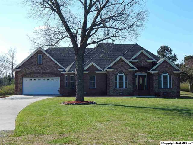 1485 Martling Cut-Off Road, Albertville, AL 35951 (MLS #1089328) :: Amanda Howard Real Estate™