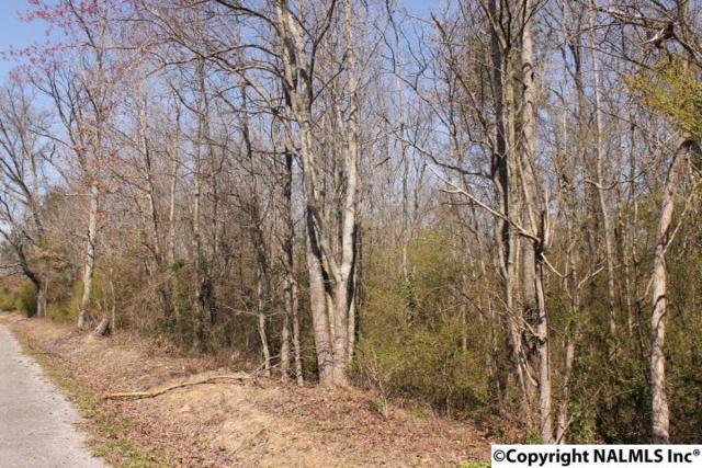 County Road 564, Sylvania, AL 35988 (MLS #1089332) :: Amanda Howard Real Estate™