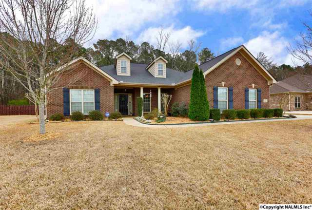127 Sage Willow Drive, Madison, AL 35756 (MLS #1089432) :: RE/MAX Distinctive | Lowrey Team