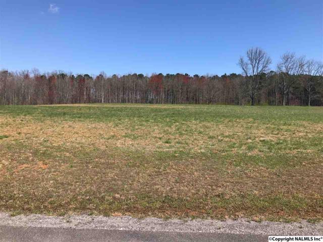 322 Worthington Lane, Guntersville, AL 35976 (MLS #1089518) :: Amanda Howard Real Estate™