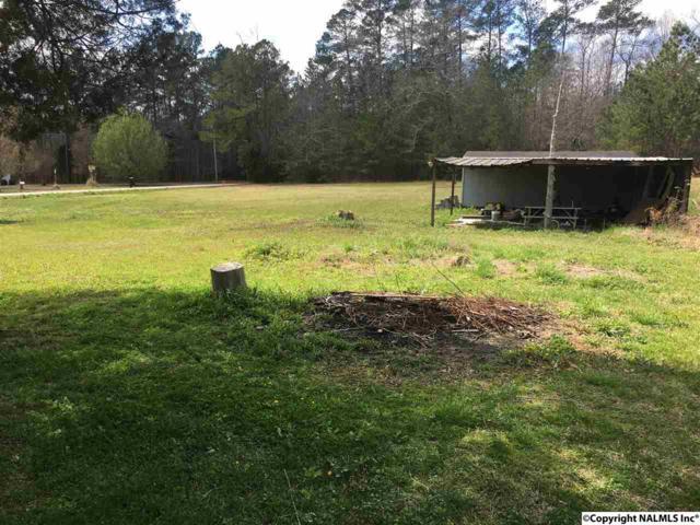 470 Nelson Hollow Road, Somerville, AL 35670 (MLS #1089645) :: RE/MAX Distinctive | Lowrey Team