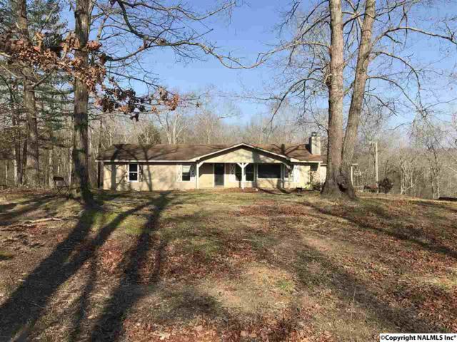 919 County Road 1442, Vinemont, AL 35179 (MLS #1089669) :: RE/MAX Distinctive | Lowrey Team