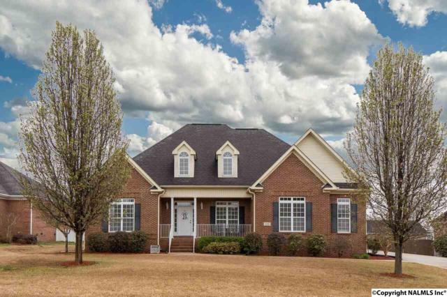 131 Spearpoint Lane, Meridianville, AL 35759 (MLS #1089670) :: Intero Real Estate Services Huntsville