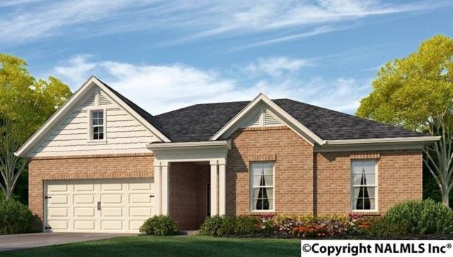 252 Waterbrook Lane, Harvest, AL 35749 (MLS #1089706) :: Legend Realty