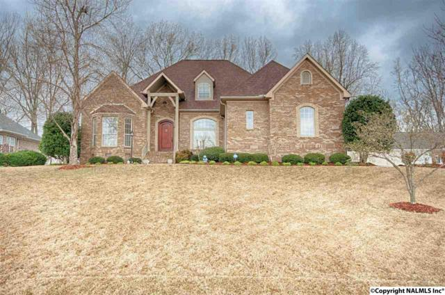 167 Riverwalk Trail, New Market, AL 35761 (MLS #1089768) :: Capstone Realty