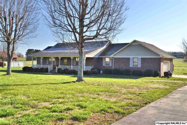 24816 Hays Mill Road, Elkmont, AL 35620 (MLS #1089775) :: Intero Real Estate Services Huntsville