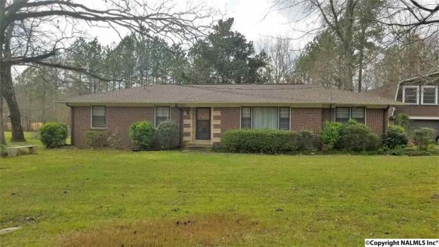 1511 Slade Drive, Glencoe, AL 35905 (MLS #1090076) :: Amanda Howard Real Estate™