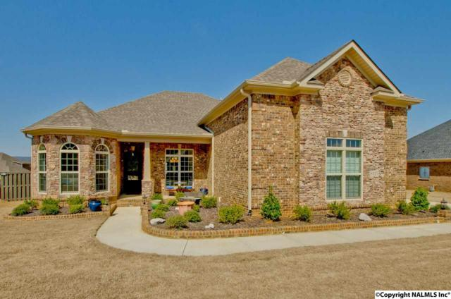8127 Trail Meadow Drive, Owens Cross Roads, AL 35763 (MLS #1090148) :: Legend Realty
