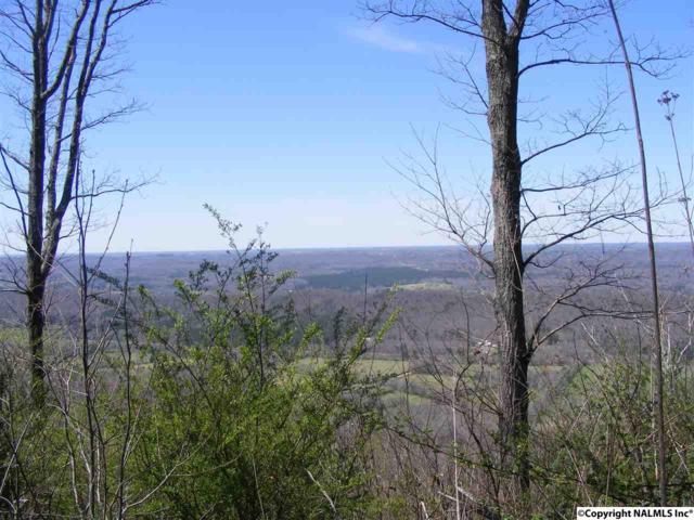 17828 County Road 89, Mentone, AL 35984 (MLS #1090676) :: RE/MAX Alliance