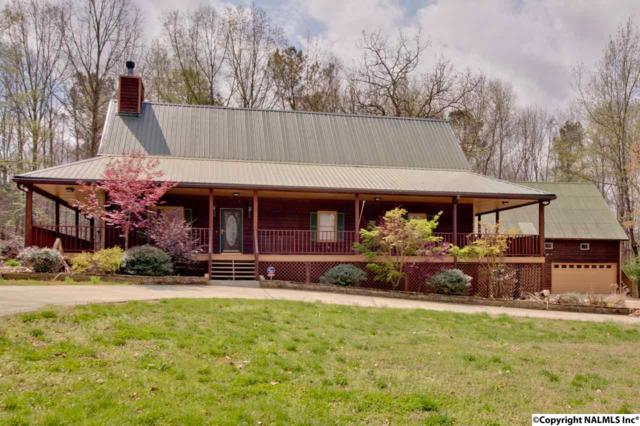 164 Mccutcheon Lane, Toney, AL 35773 (MLS #1090831) :: Amanda Howard Real Estate™
