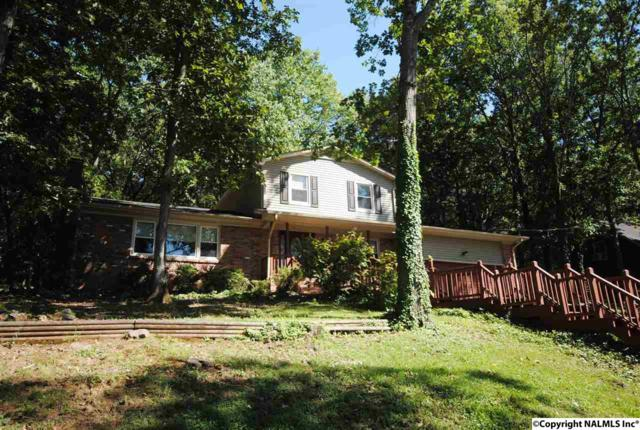 10017 Conrad Drive, Huntsville, AL 35803 (MLS #1090846) :: Legend Realty