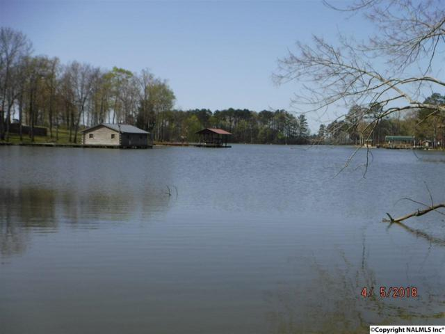 8 and 9 County Road 131, Cedar Bluff, AL 35959 (MLS #1091021) :: RE/MAX Unlimited