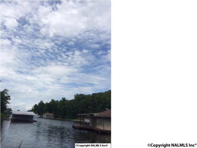 104 Signal Point Drive, Guntersville, AL 35976 (MLS #1091129) :: Amanda Howard Sotheby's International Realty