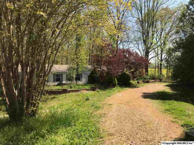 27822 Saddle Trail, Toney, AL 35773 (MLS #1091539) :: RE/MAX Alliance