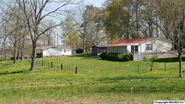 455 Thomason Road, Albertville, AL 35951 (MLS #1091576) :: Intero Real Estate Services Huntsville