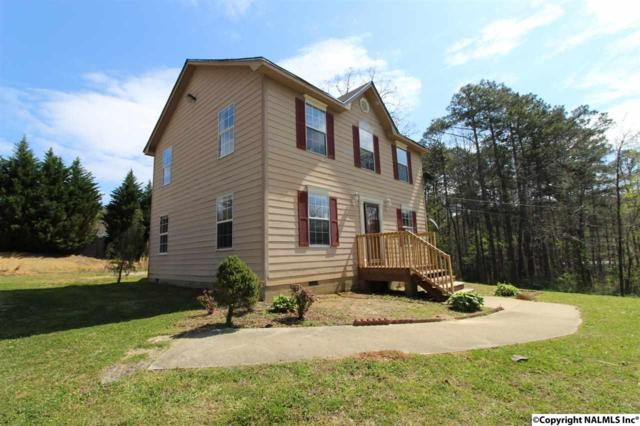 60 Lakeview Drive, Oneonta, AL 35121 (MLS #1091734) :: The Pugh Group RE/MAX Alliance